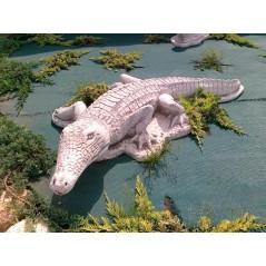 Krokodýl střední
