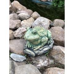 Žába Ropucha zahradní