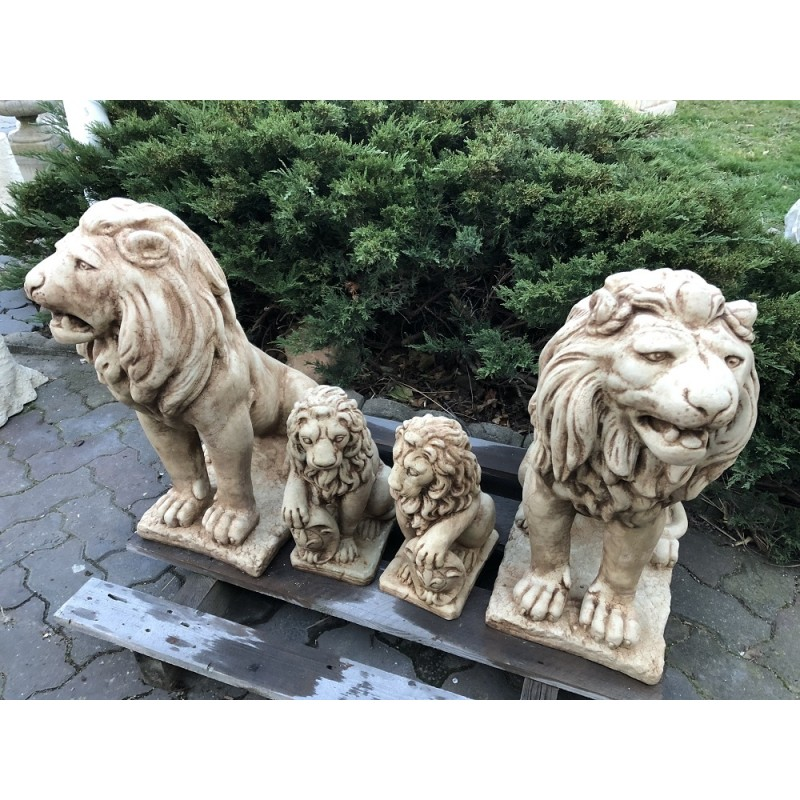 Lev velký - patina