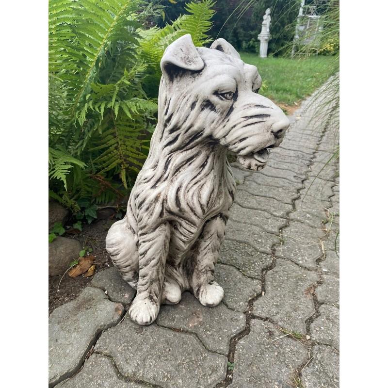 Pes velký SK