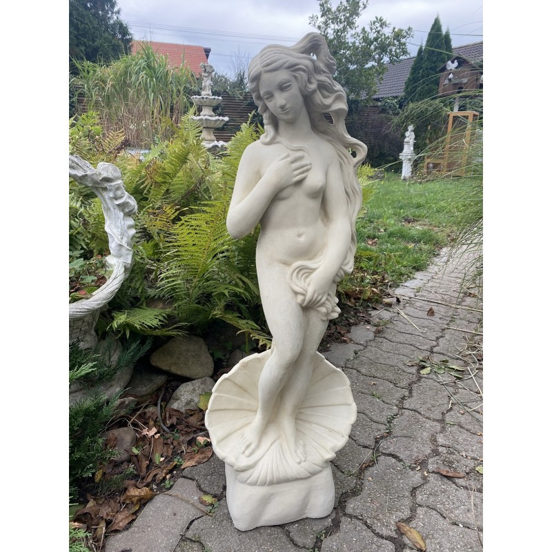 Zrození Venuše (střední)