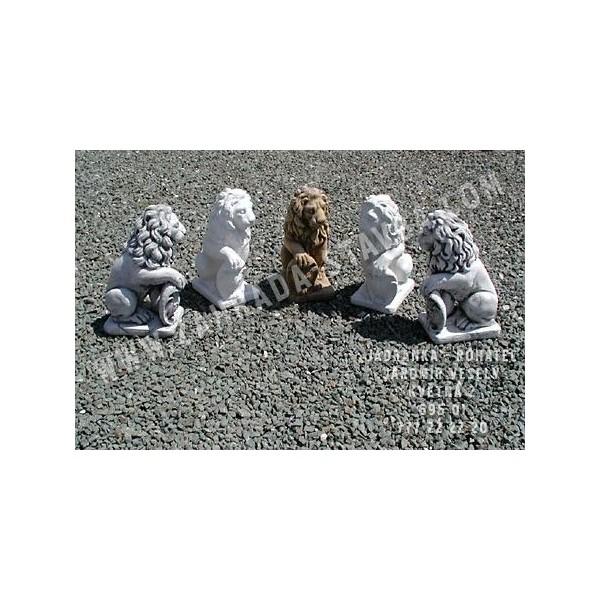 Lev malý