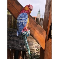 Papoušek plastika