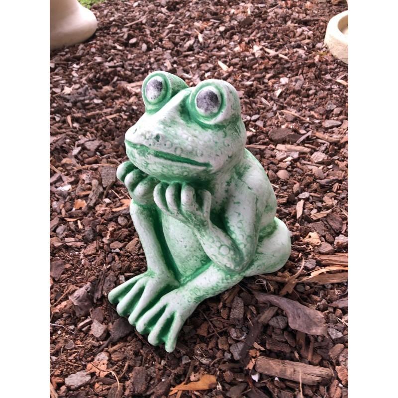 Žába velká