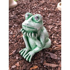 Žába zahradní skokan